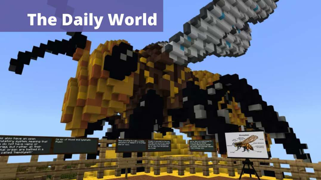 Minecraft is the Perfect Tool for Students