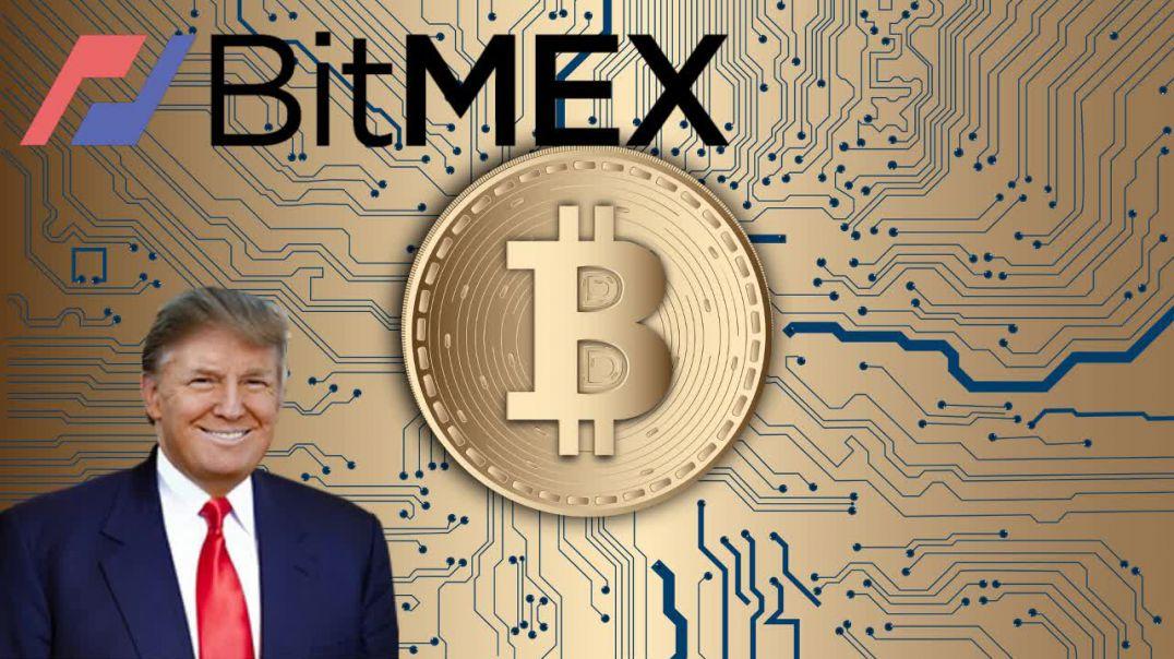 Bitcoin Volatility, MimbleWimble, Egypt, Kucoin - The Crypto Digest